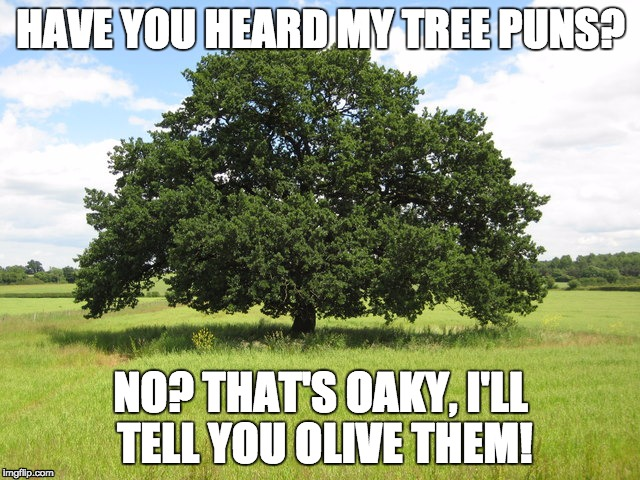 Just Branching out a Little  | HAVE YOU HEARD MY TREE PUNS? NO? THAT'S OAKY, I'LL TELL YOU OLIVE THEM! | image tagged in tree,oak,pun,green,double,olive | made w/ Imgflip meme maker