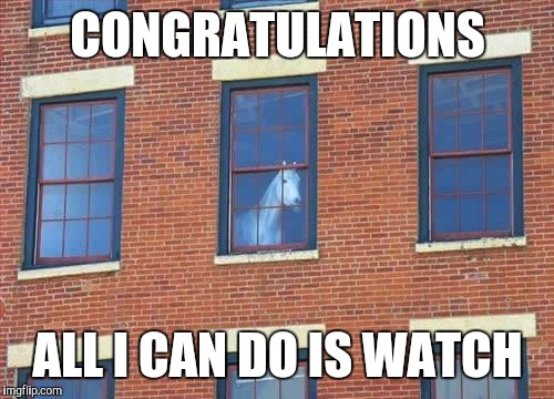 Memes     horse  | CONGRATULATIONS ALL I CAN DO IS WATCH | image tagged in memes     horse | made w/ Imgflip meme maker
