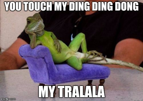 Sassy Iguana | YOU TOUCH MY DING DING DONG MY TRALALA | image tagged in memes,sassy iguana | made w/ Imgflip meme maker