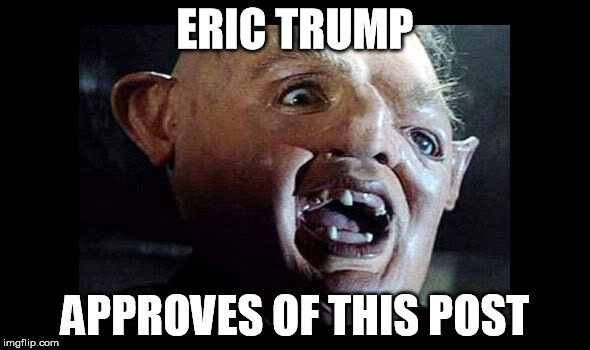 eric trump |  ERIC TRUMP; APPROVES OF THIS POST | image tagged in eric trump,trump,sloth | made w/ Imgflip meme maker