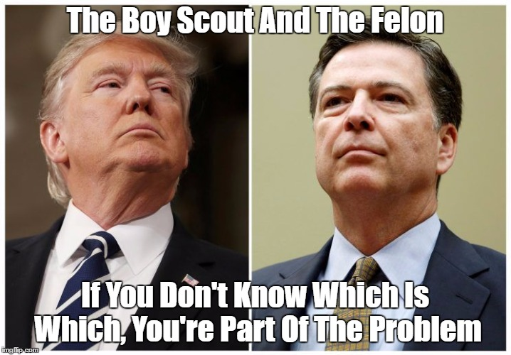 The Boy Scout And The Felon | The Boy Scout And The Felon If You Don't Know Which Is Which, You're Part Of The Problem | image tagged in james comey,despicable donald,deplorable donald,dishonest donald,devious donald,dishonorable donald | made w/ Imgflip meme maker