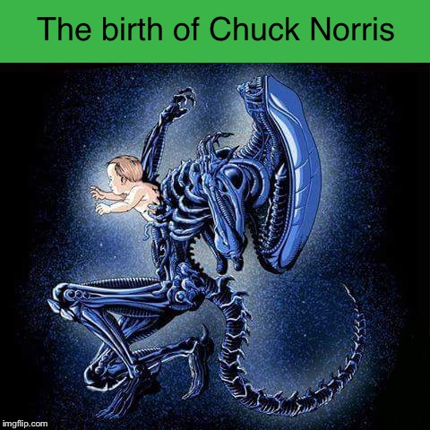 True story | image tagged in chuck norris,alien | made w/ Imgflip meme maker