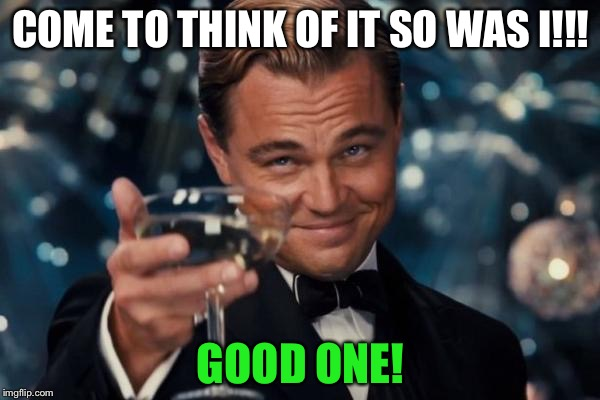 Leonardo Dicaprio Cheers Meme | COME TO THINK OF IT SO WAS I!!! GOOD ONE! | image tagged in memes,leonardo dicaprio cheers | made w/ Imgflip meme maker