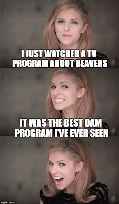 Bad Pun Anna Kendrick Meme | I JUST WATCHED A TV PROGRAM ABOUT BEAVERS IT WAS THE BEST DAM PROGRAM I'VE EVER SEEN | image tagged in memes,bad pun anna kendrick | made w/ Imgflip meme maker