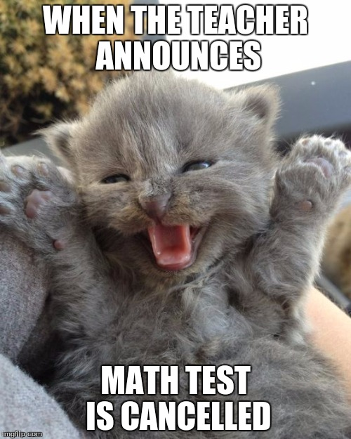 Yay Kitty |  WHEN THE TEACHER ANNOUNCES; MATH TEST IS CANCELLED | image tagged in yay kitty | made w/ Imgflip meme maker