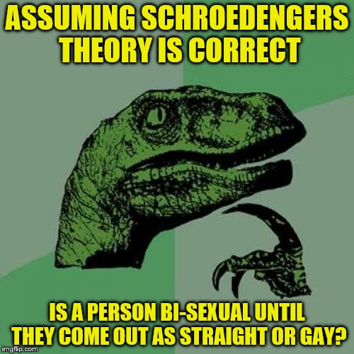 Don't think too hard on this one  | ASSUMING SCHROEDENGERS THEORY IS CORRECT IS A PERSON BI-SEXUAL UNTIL THEY COME OUT AS STRAIGHT OR GAY? | image tagged in memes,philosoraptor | made w/ Imgflip meme maker