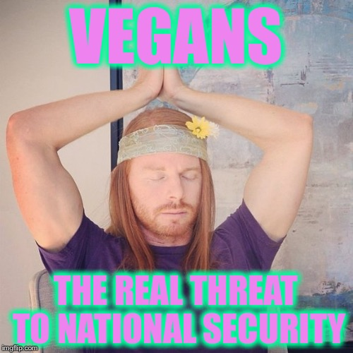 VEGANS THE REAL THREAT TO NATIONAL SECURITY | image tagged in reality winner,memes,vegan,vegans | made w/ Imgflip meme maker