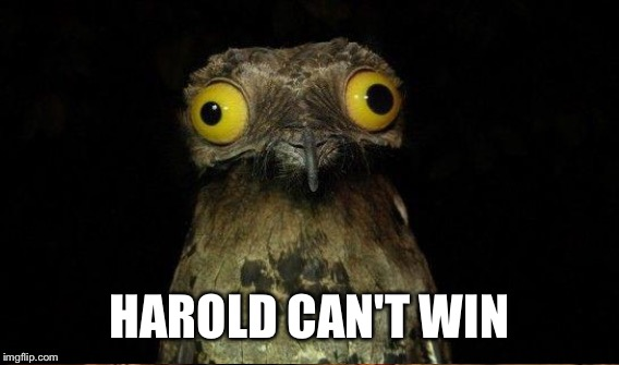 HAROLD CAN'T WIN | made w/ Imgflip meme maker