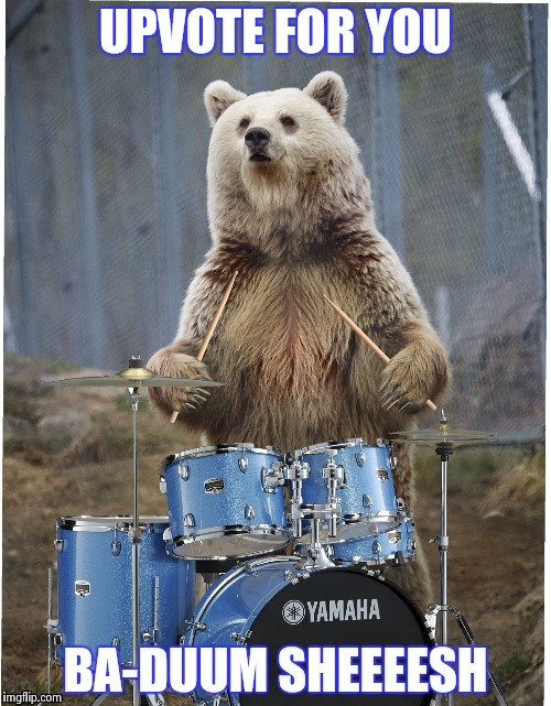 UPVOTE FOR YOU | image tagged in drummer bear | made w/ Imgflip meme maker