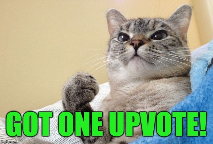 Success Cat #1 | GOT ONE UPVOTE! | image tagged in success cat 1 | made w/ Imgflip meme maker