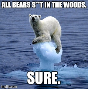 Is he not a bear anymore? | ALL BEARS S**T IN THE WOODS. SURE. | image tagged in global warming polar bear | made w/ Imgflip meme maker