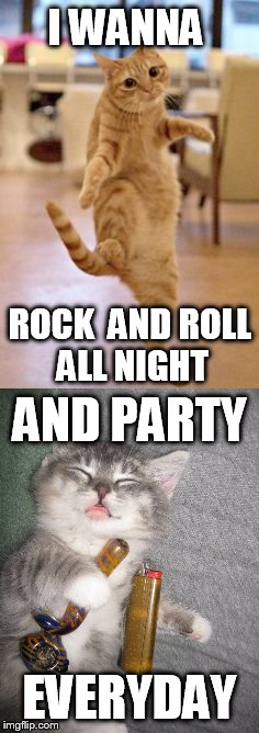 I WANNA EVERYDAY ROCK  AND ROLL ALL NIGHT AND PARTY | made w/ Imgflip meme maker