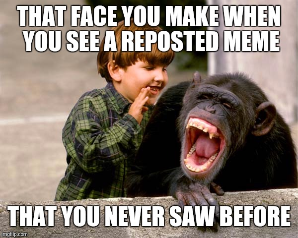 THAT FACE YOU MAKE WHEN YOU SEE A REPOSTED MEME THAT YOU NEVER SAW BEFORE | made w/ Imgflip meme maker