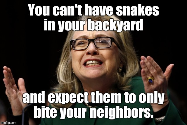 You can't have snakes in your backyard and expect them to only bite your neighbors. | made w/ Imgflip meme maker