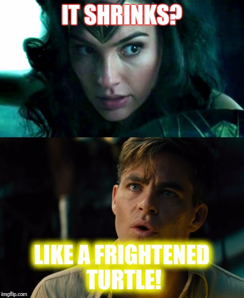 I was in the pool | IT SHRINKS? LIKE A FRIGHTENED TURTLE! | image tagged in wonder woman | made w/ Imgflip meme maker