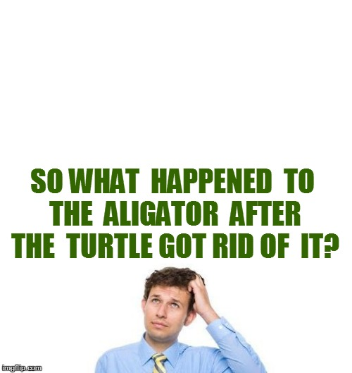 SO WHAT  HAPPENED  TO  THE  ALIGATOR  AFTER  THE  TURTLE GOT RID OF  IT? | made w/ Imgflip meme maker