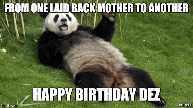 Dirty Panda Memes Imgflip