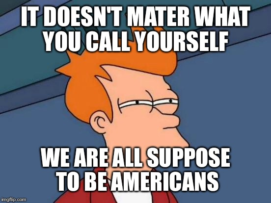 Futurama Fry Meme | IT DOESN'T MATER WHAT YOU CALL YOURSELF WE ARE ALL SUPPOSE TO BE AMERICANS | image tagged in memes,futurama fry | made w/ Imgflip meme maker