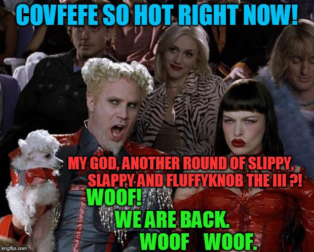 I had to create this. Dont you see!!! Please try to understand... | COVFEFE SO HOT RIGHT NOW! WOOF!                                    WE ARE BACK.                             WOOF    WOOF. MY GOD, ANOTHER RO | image tagged in slippy,slappy,fluffyknob the iii | made w/ Imgflip meme maker