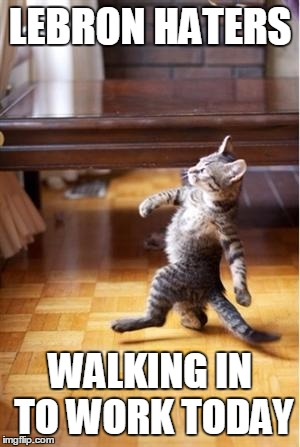 Walking Cat | LEBRON HATERS WALKING IN TO WORK TODAY | image tagged in lebron james,finals,nba | made w/ Imgflip meme maker