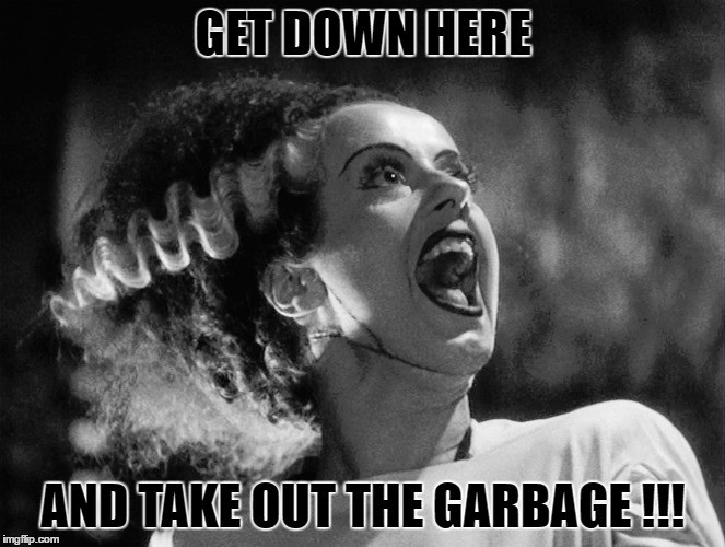 GET DOWN HERE AND TAKE OUT THE GARBAGE !!! | made w/ Imgflip meme maker