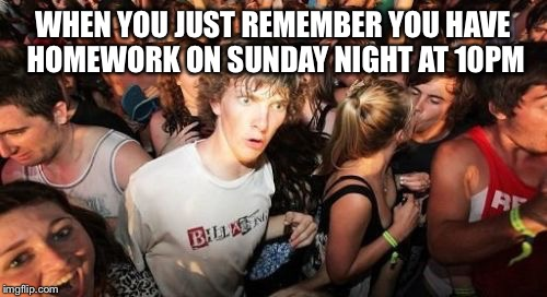 Sudden Clarity Clarence Meme | WHEN YOU JUST REMEMBER YOU HAVE HOMEWORK ON SUNDAY NIGHT AT 10PM | image tagged in memes,sudden clarity clarence | made w/ Imgflip meme maker