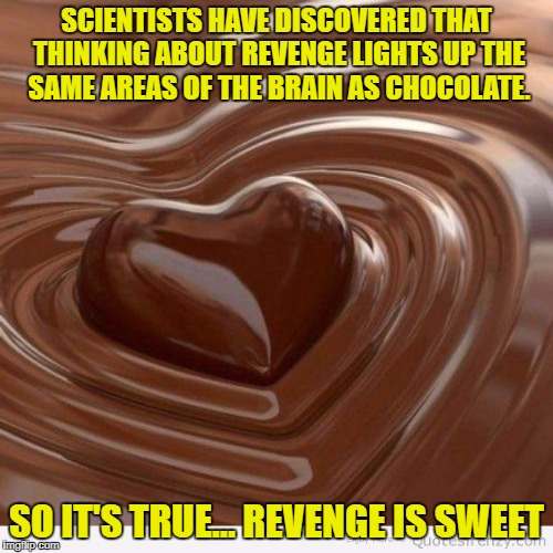Chocolate | SCIENTISTS HAVE DISCOVERED THAT THINKING ABOUT REVENGE LIGHTS UP THE SAME AREAS OF THE BRAIN AS CHOCOLATE. SO IT'S TRUE… REVENGE IS SWEET | image tagged in chocolate,revenge,funny,funny memes,revenge is sweet | made w/ Imgflip meme maker