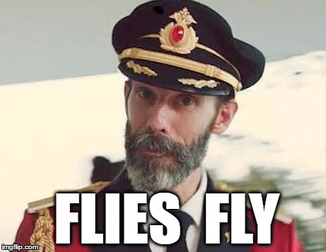 Captain Obvious | FLIES  FLY | image tagged in captain obvious | made w/ Imgflip meme maker