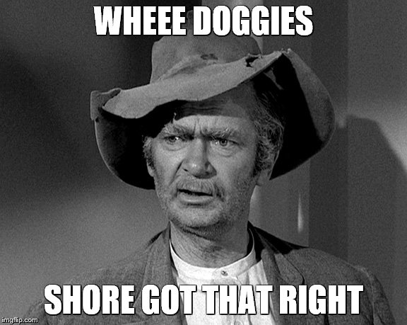 Jed Clampett | WHEEE DOGGIES SHORE GOT THAT RIGHT | image tagged in jed clampett | made w/ Imgflip meme maker