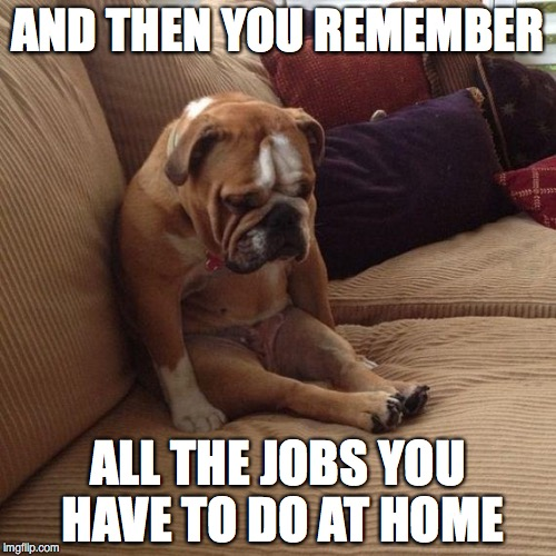 sad dog | AND THEN YOU REMEMBER ALL THE JOBS YOU HAVE TO DO AT HOME | image tagged in sad dog | made w/ Imgflip meme maker