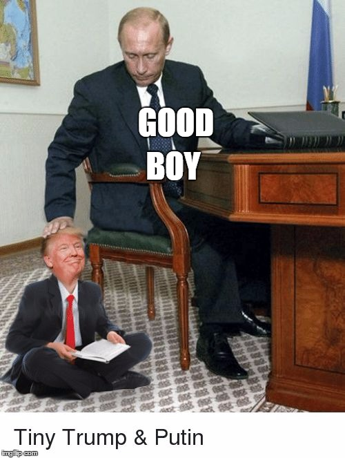 GOOD BOY | image tagged in stan | made w/ Imgflip meme maker