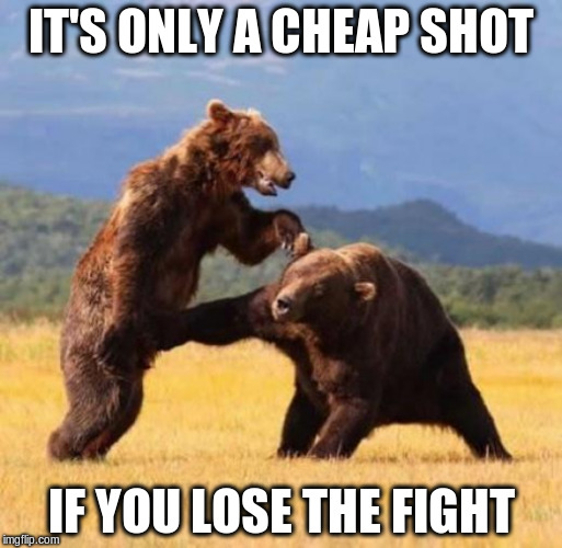 Bear punch | IT'S ONLY A CHEAP SHOT IF YOU LOSE THE FIGHT | image tagged in bear punch | made w/ Imgflip meme maker