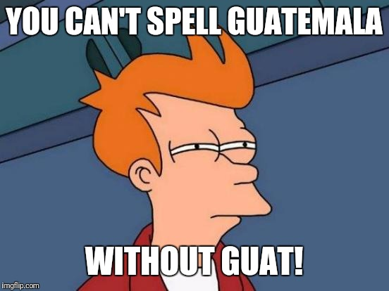 Futurama Fry Meme | YOU CAN'T SPELL GUATEMALA WITHOUT GUAT! | image tagged in memes,futurama fry | made w/ Imgflip meme maker