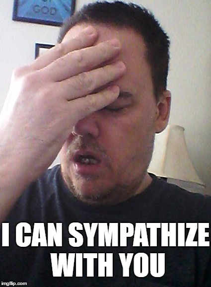 face palm | I CAN SYMPATHIZE WITH YOU | image tagged in face palm | made w/ Imgflip meme maker