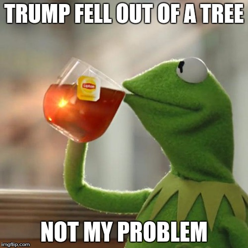 But Thats None Of My Business Meme | TRUMP FELL OUT OF A TREE NOT MY PROBLEM | image tagged in memes,but thats none of my business,kermit the frog | made w/ Imgflip meme maker
