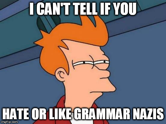 Futurama Fry Meme | I CAN'T TELL IF YOU HATE OR LIKE GRAMMAR NAZIS | image tagged in memes,futurama fry | made w/ Imgflip meme maker