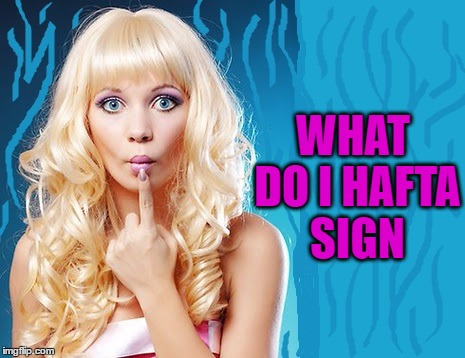 ditzy blonde | WHAT DO I HAFTA SIGN | image tagged in ditzy blonde | made w/ Imgflip meme maker