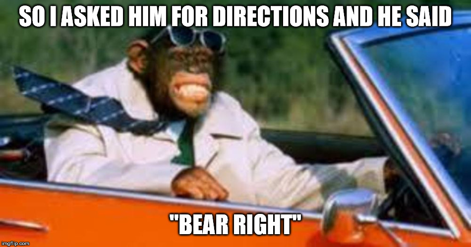 "Monkey driver | SO I ASKED HIM FOR DIRECTIONS AND HE SAID ""BEAR RIGHT"" 