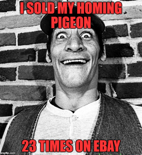 know what i mean Vern? | I SOLD MY HOMING PIGEON 23 TIMES ON EBAY | image tagged in know what i mean vern | made w/ Imgflip meme maker