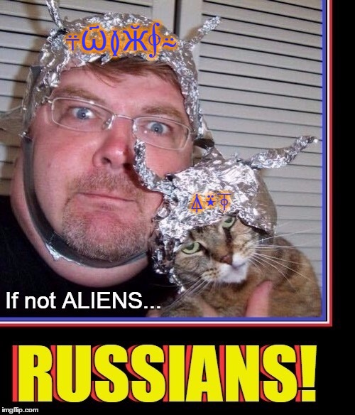 Being Ever Vigilant for the Enemy | ⍋⍣⍕ ⍡Ѽ≬Ӂ∲⍨ | image tagged in vince vance,tinfoil hat,cats,memes,russians,aliens | made w/ Imgflip meme maker