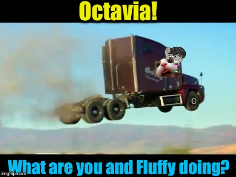 Octavia! What are you and Fluffy doing? | made w/ Imgflip meme maker
