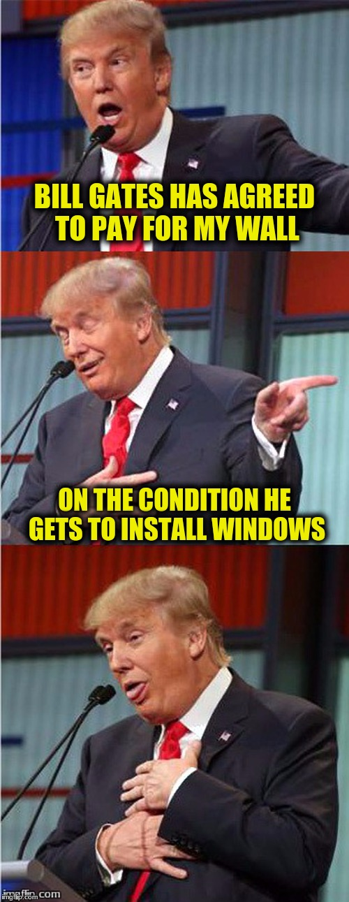 Bad Pun Trump | BILL GATES HAS AGREED TO PAY FOR MY WALL ON THE CONDITION HE GETS TO INSTALL WINDOWS | image tagged in memes,bad pun trump | made w/ Imgflip meme maker