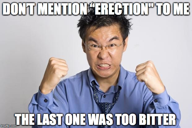 "DON'T MENTION ""ERECTION"" TO ME THE LAST ONE WAS TOO BITTER 