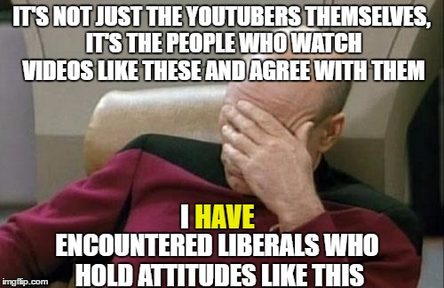 Captain Picard Facepalm Meme | IT'S NOT JUST THE YOUTUBERS THEMSELVES, IT'S THE PEOPLE WHO WATCH VIDEOS LIKE THESE AND AGREE WITH THEM I HAVE ENCOUNTERED LIBERALS WHO HOLD | image tagged in memes,captain picard facepalm | made w/ Imgflip meme maker