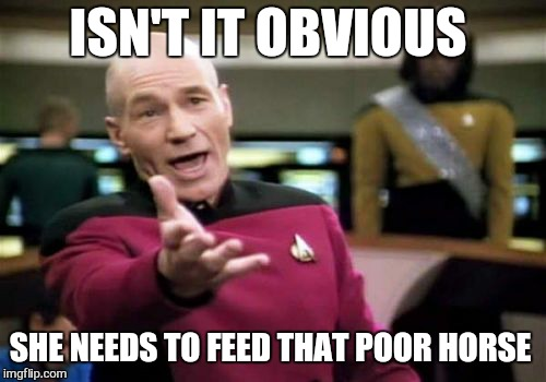 Picard Wtf Meme | ISN'T IT OBVIOUS SHE NEEDS TO FEED THAT POOR HORSE | image tagged in memes,picard wtf | made w/ Imgflip meme maker