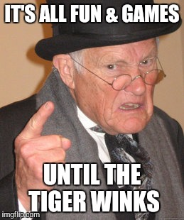Back In My Day Meme | IT'S ALL FUN & GAMES UNTIL THE TIGER WINKS | image tagged in memes,back in my day | made w/ Imgflip meme maker