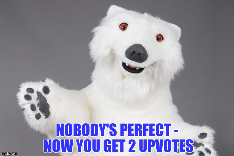 Polar Bear | NOBODY'S PERFECT - NOW YOU GET 2 UPVOTES | image tagged in polar bear | made w/ Imgflip meme maker