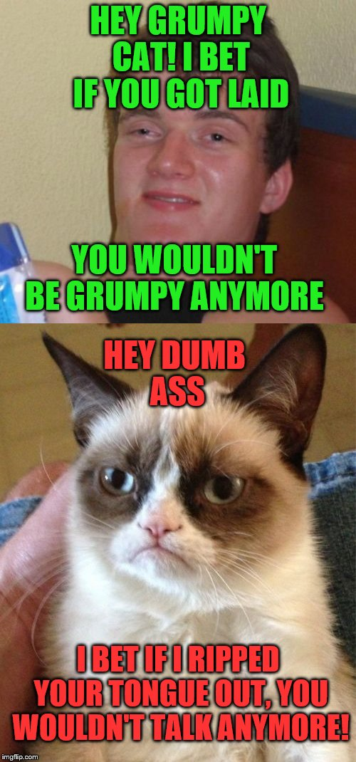 A conversation overheard back stage at Imgflip studios | HEY GRUMPY CAT! I BET IF YOU GOT LAID YOU WOULDN'T BE GRUMPY ANYMORE HEY DUMB ASS I BET IF I RIPPED YOUR TONGUE OUT, YOU WOULDN'T TALK ANYMO | image tagged in 10 guy,grumpy cat | made w/ Imgflip meme maker