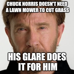 CHUCK NORRIS DOESN'T NEED A LAWN MOWER TO CUT GRASS HIS GLARE DOES IT FOR HIM | image tagged in chuck norris fact | made w/ Imgflip meme maker