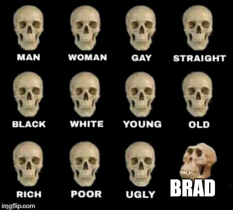 Don't fuck with me brad | BRAD | image tagged in idiot skull | made w/ Imgflip meme maker